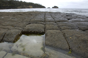 Tessellated Pavement stock photo