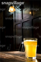SnapVillage watermark example